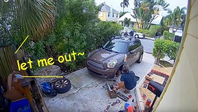 男鄰居聽到女慘叫「放我出去~」 警到場一看到「兇手」秒笑翻