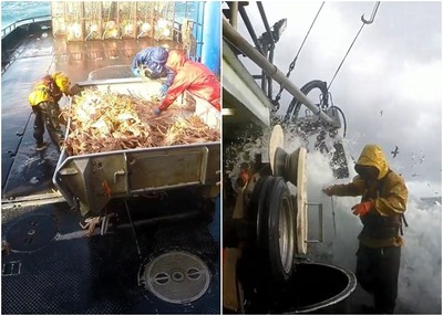 阿拉斯加捕蟹船下沉5失蹤!工作5天賺300萬 永遠缺人原因曝光!