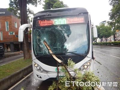 快訊/午後雨彈狂炸!台中路樹倒塌釀2意外 刺穿公車前擋…騎士慘摔傷
